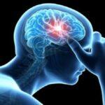 چرا عروق مغز دچار انسداد می شوند؟