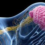 جدیدترین یافته های علمی درمان صرع